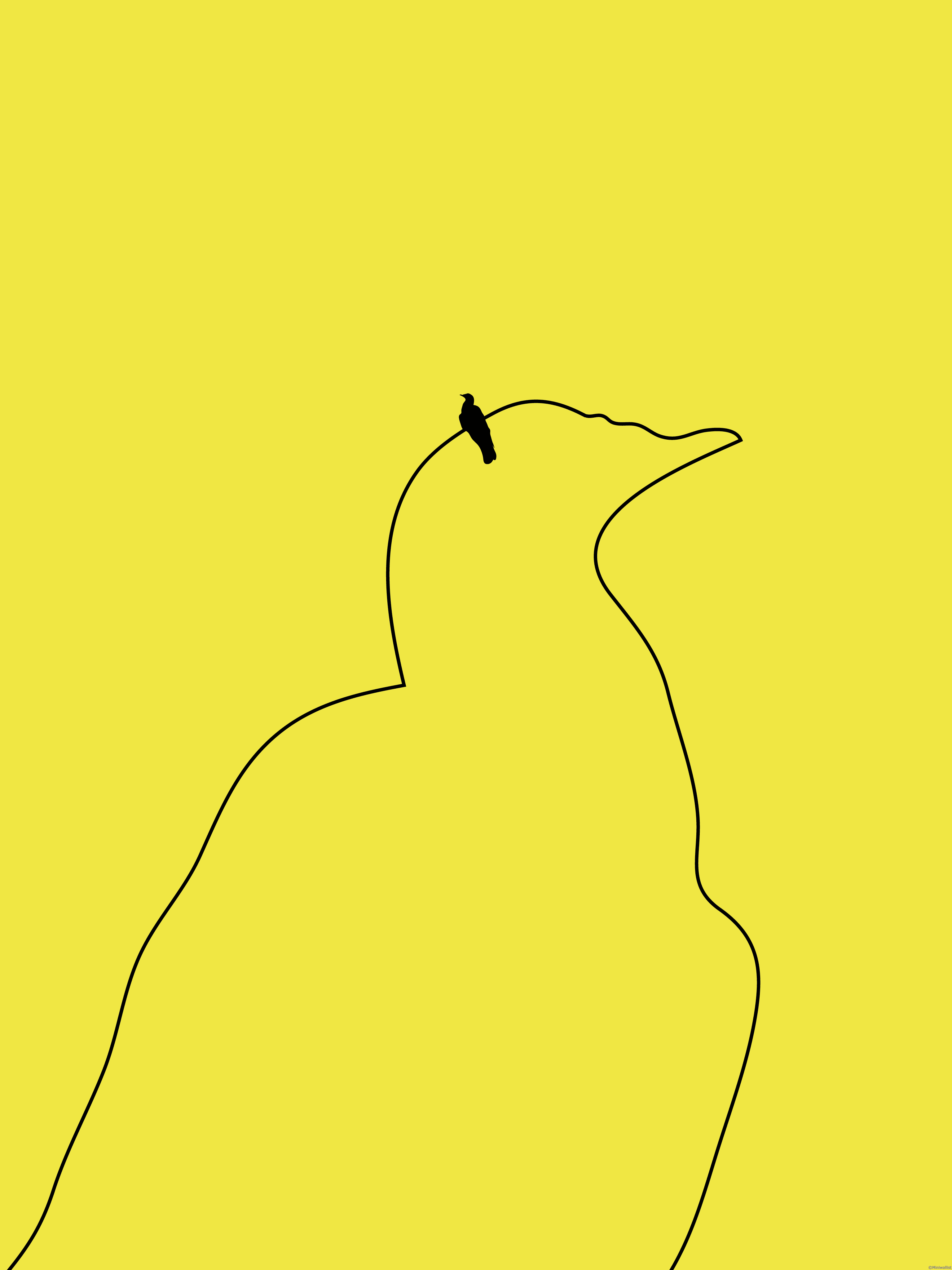 Fantastic Wallpaper Bird Minimalist - bird-on-a-wire-mobile-wallpaper-minimalist-3072x4096  Graphic_1276.png