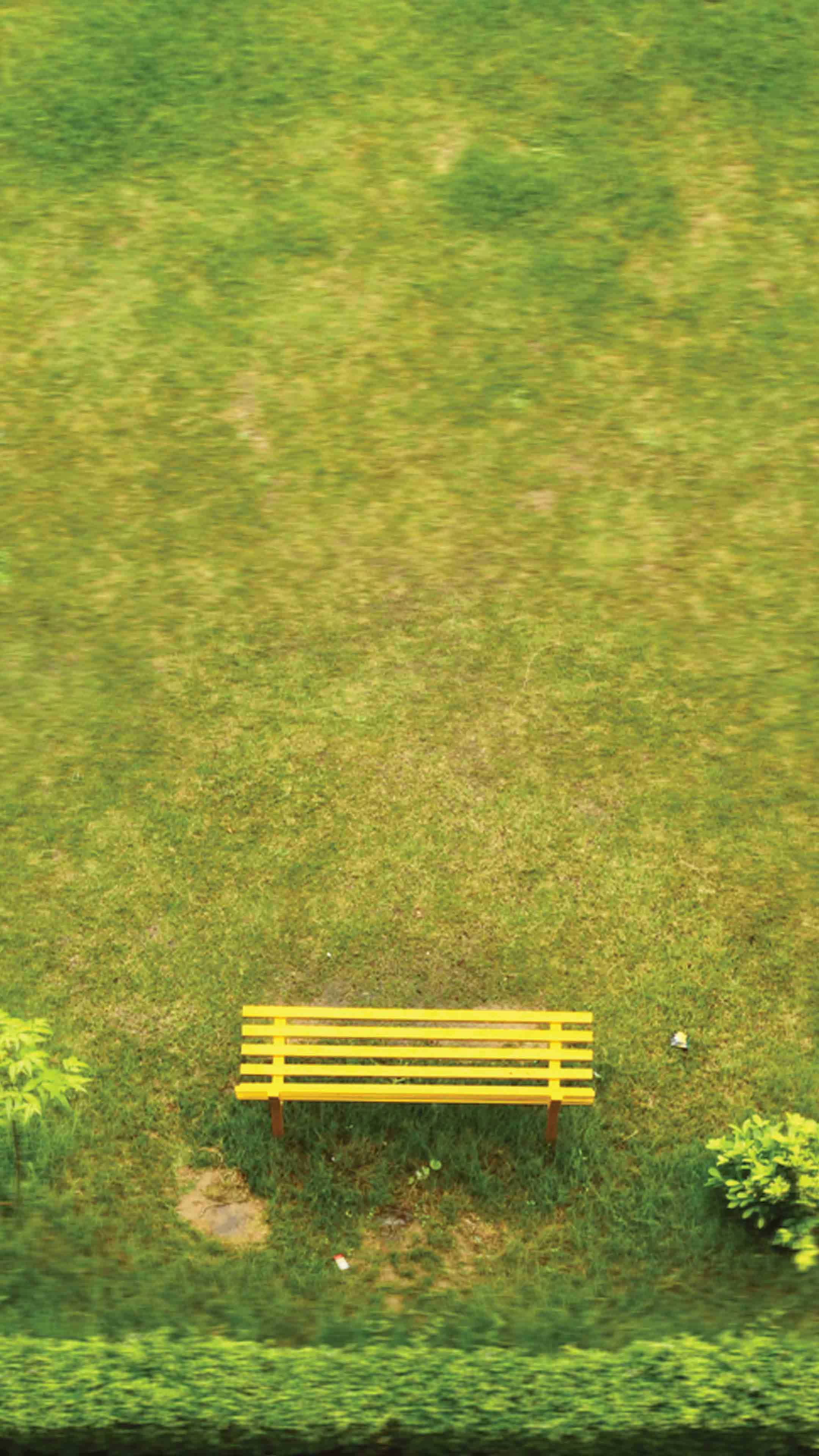 yellow bench mobile wallpaper minimalist